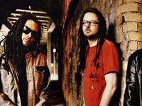Le Korn acoustique